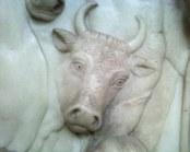 Toro en la Abadía de Bath (Reino Unido)
