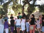 Arboretum Marbella: Cursos y Educación Ambiental en Málaga