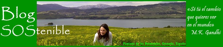 Blogsostenible, un blog muy ecológico