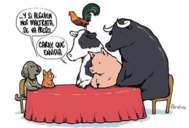 Comer carne destroza el planeta (y a los animales): Aquí tienes 3 vídeos cortos que seguro que te van a gustar.