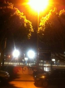 Málaga: La luz de las farolas ilumina las copas de los árboles y no a los peatones.