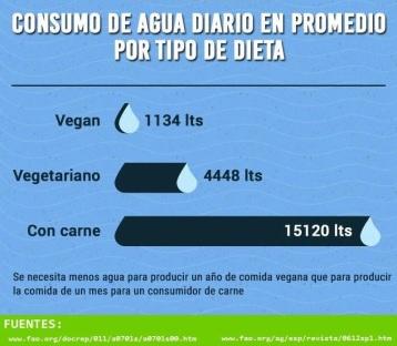 Consumo de agua de la dieta vegana, vegetariana y carnívora.